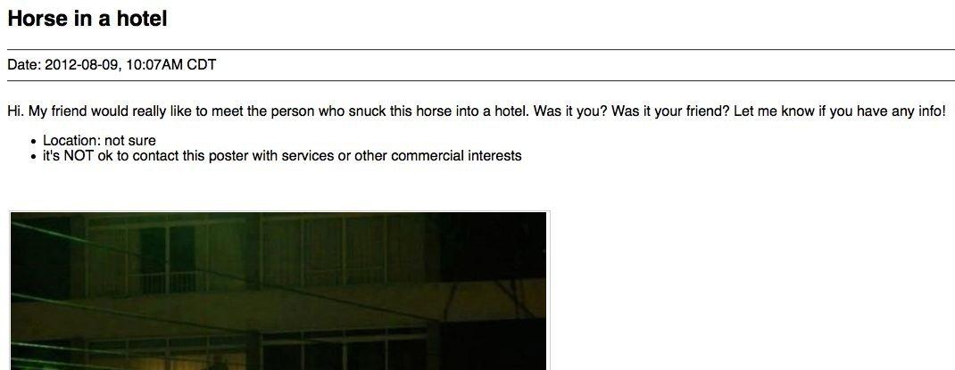 craigslist horse hotel