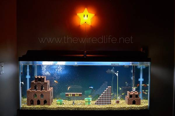 the super mario brothers aquarium
